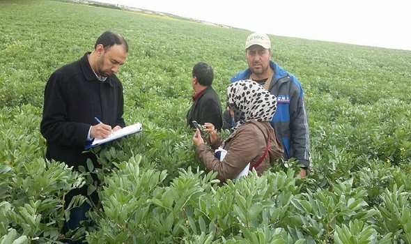 """صوت الإمارات - """"البيئة الإماراتية"""" تصدر قراراً بشأن استخدام المبيدات في المنتجات الزراعية والغذائية"""
