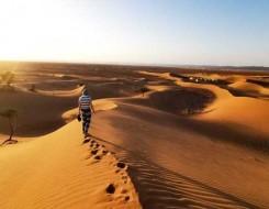صوت الإمارات - شجر الغاف يعزز الاستدامة و ينثر روح التسامح في إكسبو 2020 دبي