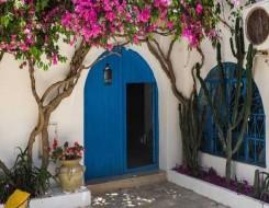 صوت الإمارات - أفكار متنوعة لتصميمات مختلفة لأبواب المنزل الأماميّة